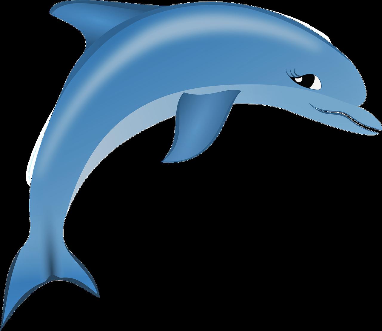 Menschentyp Delfin